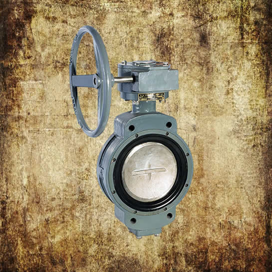 Double Eccentric Worm Manual Butterfly Valve