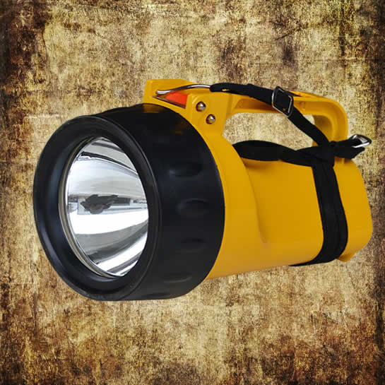 DF-6 Explosion Proof Light